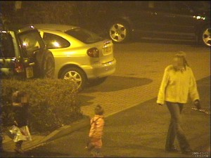 low light security camera PTZ example 1